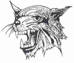 bms-wildcat.jpg